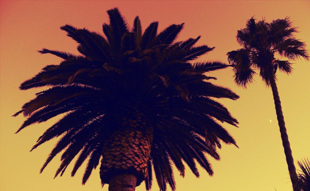laguna_beach_16